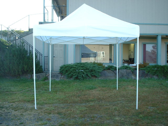 Where to find TENT,  POP UP 10  X 10  WHITE in Monroe